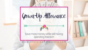 Grown-Up Allowance