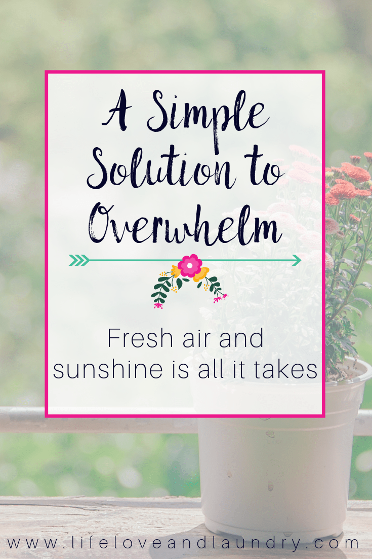 simple solutions for overwhelm